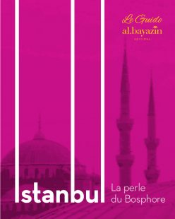 Guide Istanbul, La perle du Bosphore, 500 pages